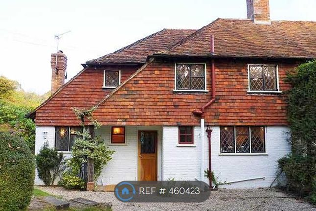 Thumbnail Semi-detached house to rent in Beech Hill, Wadhurst