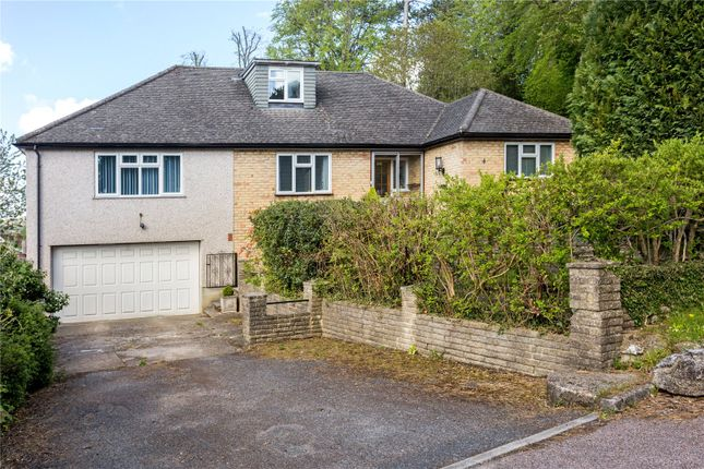 Thumbnail Detached house for sale in Elgin Crescent, Caterham, Surrey