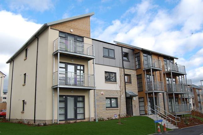 Thumbnail Flat to rent in Hammerman Avenue, Aberdeen