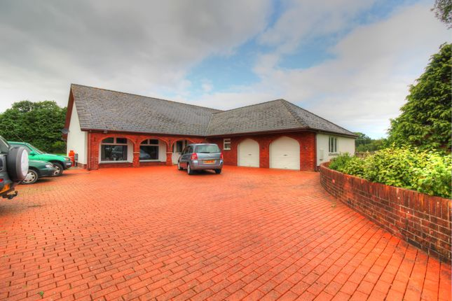 Thumbnail Bungalow for sale in Waungiach, Llechryd, Cardigan
