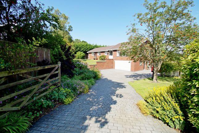 Thumbnail Detached bungalow for sale in The Dene, West Rainton, Houghton Le Spring