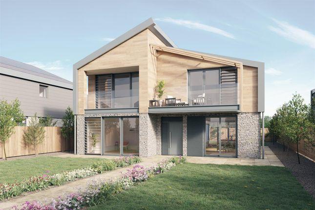 Thumbnail Detached house for sale in Rock Road, Rock, Wadebridge