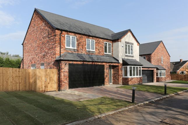 Thumbnail Detached house for sale in The Headlands, Warton Lane, Austrey, Atherstone