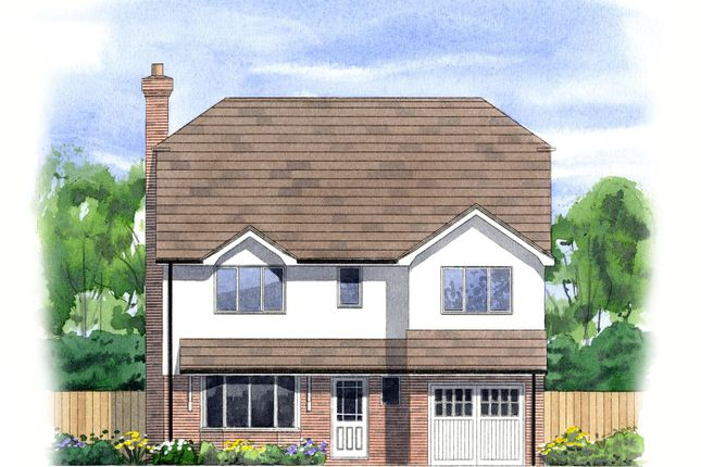 Thumbnail Detached house for sale in Eastbourne Road, Halland, Lewes