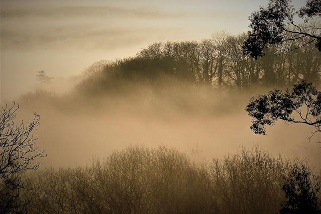 Grounds In Mist of Rhydlewis, Llandysul SA44