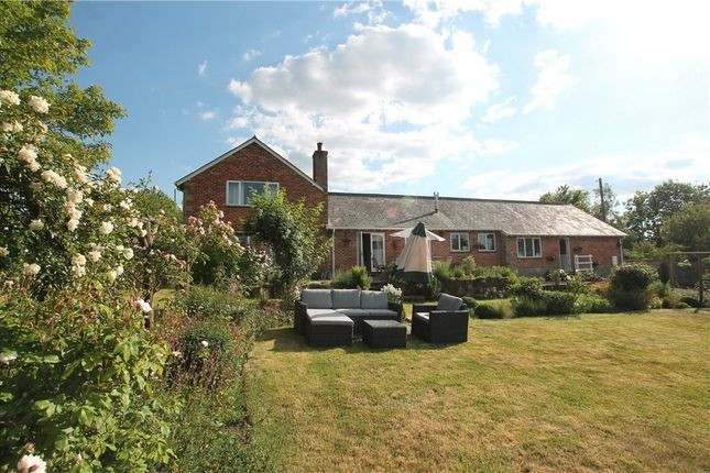 Thumbnail Equestrian property for sale in Sherborne Causeway, Shaftesbury, Dorset
