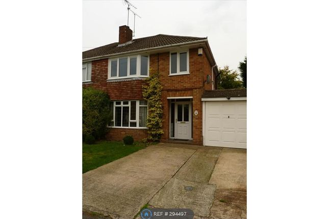 3 bed semi-detached house to rent in Avalon Road, Earley