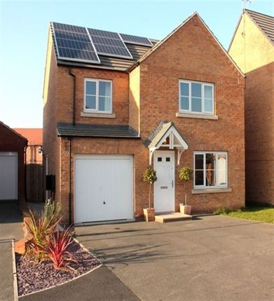 Thumbnail Detached house to rent in Willow Green, Selby