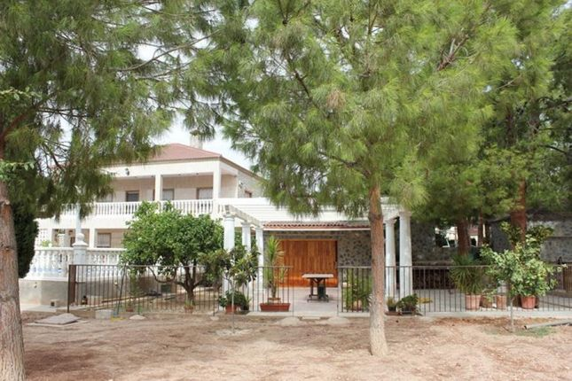 Property For Sale In Crevillente Spain