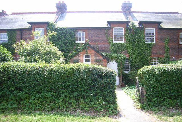 Thumbnail Cottage to rent in Farm Cottages, Lower Road, Havant