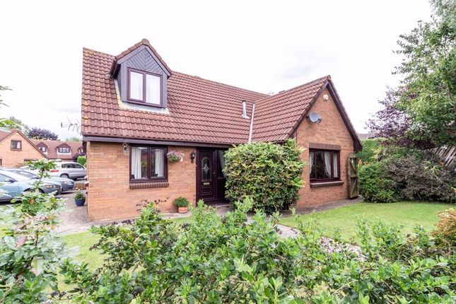 Thumbnail Detached bungalow for sale in Heston Close, Portskewett, Caldicot