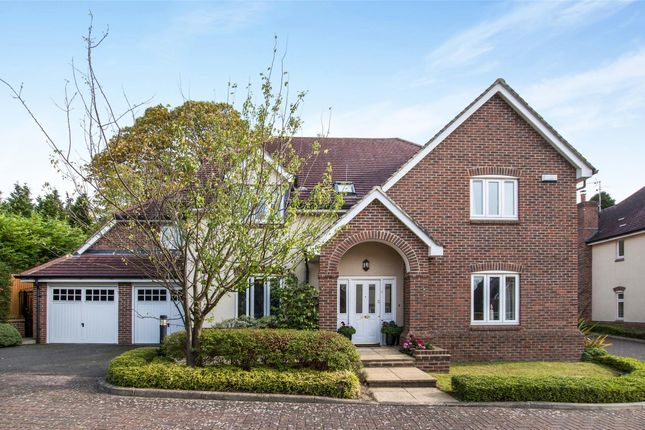Thumbnail Detached house for sale in Hillthorpe Close, Purley, Surrey