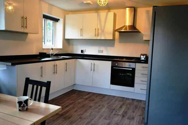 Thumbnail Shared accommodation to rent in Donnini Place, Durham