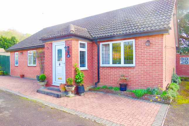 Thumbnail Detached bungalow for sale in Old Bedford Road, Luton