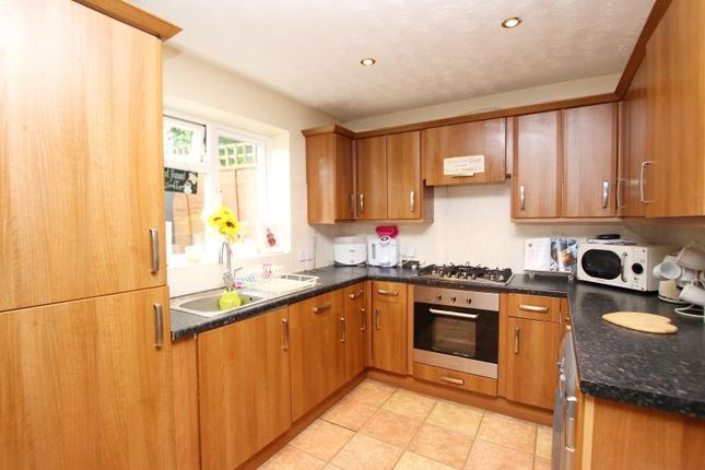Thumbnail Terraced house to rent in Blenheim Way, Yaxley, Peterborough
