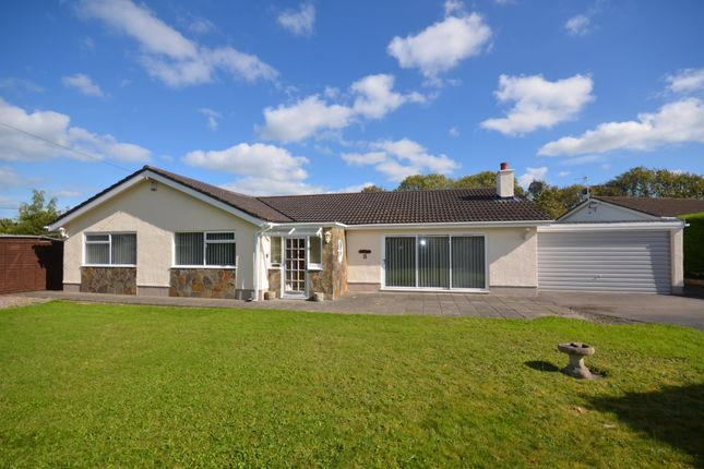 Thumbnail Detached bungalow for sale in Pencnwc Isaf, Cross Inn, Nr New Quay