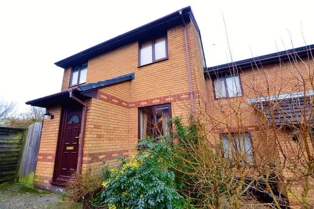 Thumbnail Terraced house to rent in Cliff End Park, Wadebridge