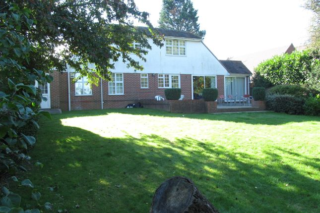 Thumbnail Detached house to rent in Cressingham Road, Reading