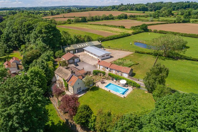 Thumbnail Detached house for sale in Markington, Harrogate, North Yorkshire