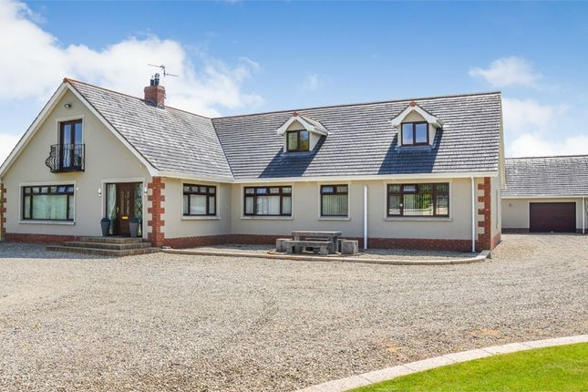 Thumbnail Detached house for sale in The Slopes, Portadown, Craigavon, County Armagh
