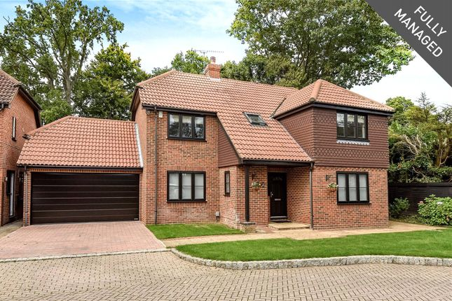 Thumbnail Detached house to rent in Napier Drive, Camberley, Surrey