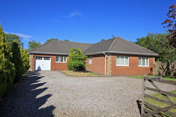 Thumbnail Detached bungalow for sale in Black Lion Road, Gorslas, Cross Hands, Carmarthenshire