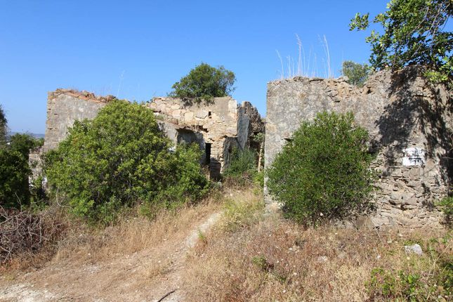 Land for sale in Cerro Do Botelho, São Brás De Alportel (Parish), São Brás De Alportel, East Algarve, Portugal