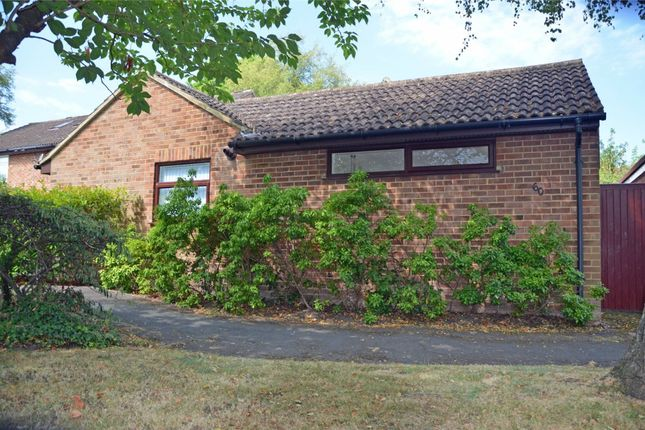 Terraced bungalow for sale in Cypress Grove, Ash Vale, Surrey