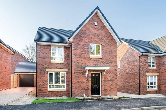 "Thumbnail Detached house for sale in ""Mey"" at Kintore Road, Glasgow"