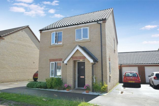 Thumbnail Detached house for sale in Almond Drive, Cringleford, Norwich