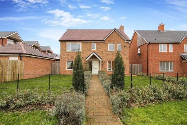 Thumbnail Detached house for sale in Eden Walk, Morpeth, Northumberland