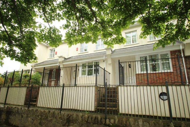 Thumbnail Property to rent in St. Marychurch Road, Torquay