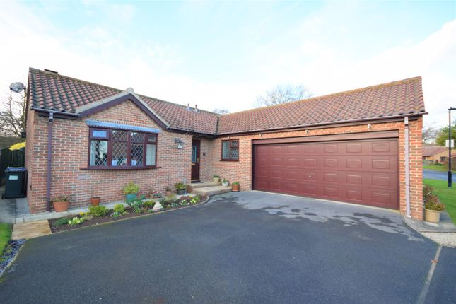 3 bed detached bungalow to rent in Home Meadows, Tickhill, Doncaster DN11