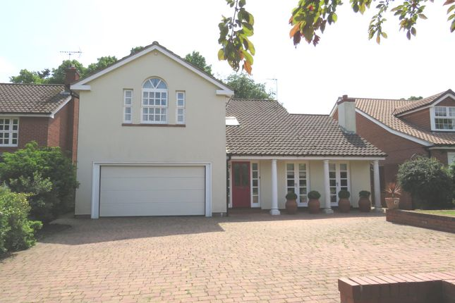 Thumbnail Detached house for sale in Cheyne Walk, Bawtry, Doncaster