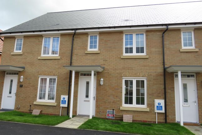 Thumbnail Property to rent in Shackleton Road, Yeovil