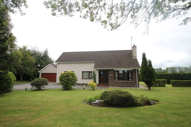 Thumbnail Bungalow for sale in Halftown Road, Lisburn