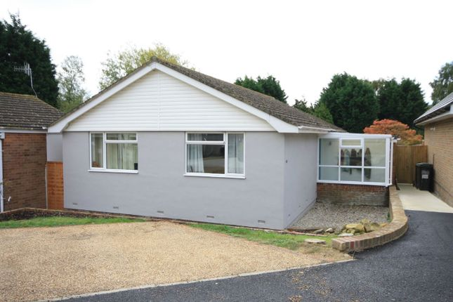 Thumbnail Detached bungalow for sale in Haslam Crescent, Bexhill On Sea
