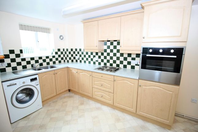 Thumbnail Terraced house to rent in 11 Allen Gardens, Sheffield, South Yorkshire
