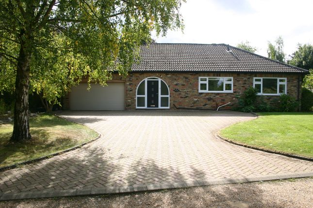 Thumbnail Detached bungalow to rent in Sandels Way, Beaconsfield