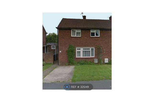 Thumbnail Semi-detached house to rent in Homestall, Guildford