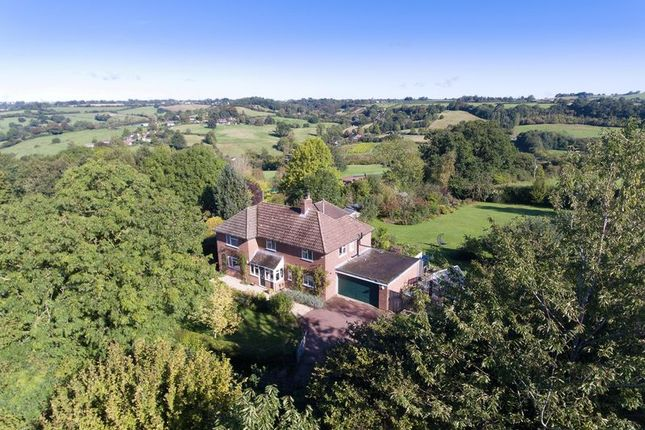 Thumbnail Detached house for sale in Melbury Abbas, Shaftesbury