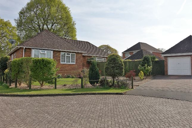 Thumbnail Detached bungalow for sale in Mountfield, Hythe, Southampton