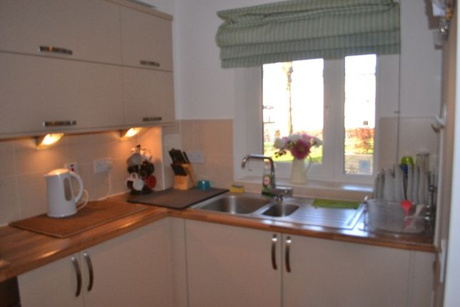 Thumbnail Terraced house to rent in Glamis Gardens, West End, Dundee