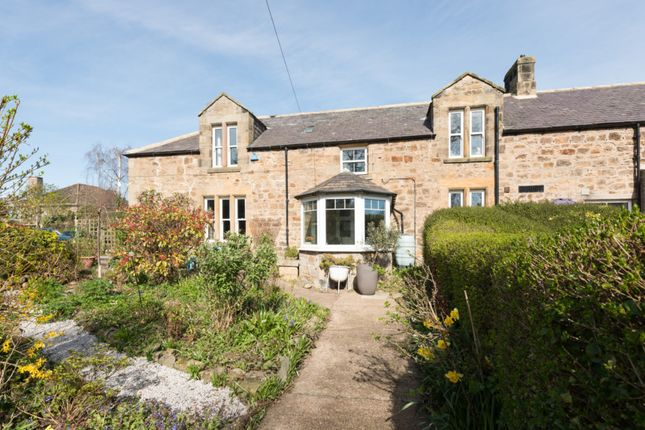 Thumbnail Cottage for sale in Lesbury, Alnwick