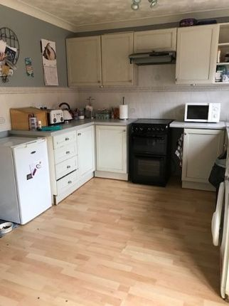 Thumbnail Semi-detached house to rent in Campion Close, North Walsham