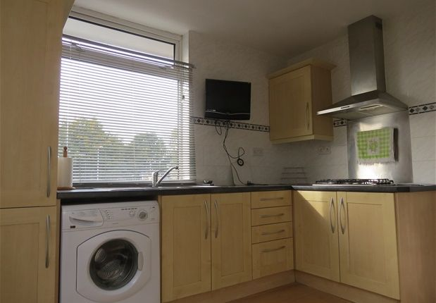 Thumbnail Property to rent in Milkwood Road, London