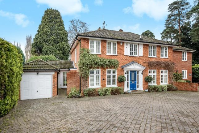 Thumbnail Semi-detached house to rent in The Poplars, South Ascot