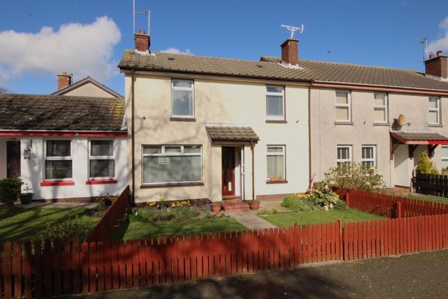 Thumbnail Semi-detached house for sale in Barnagh Park, Donaghadee