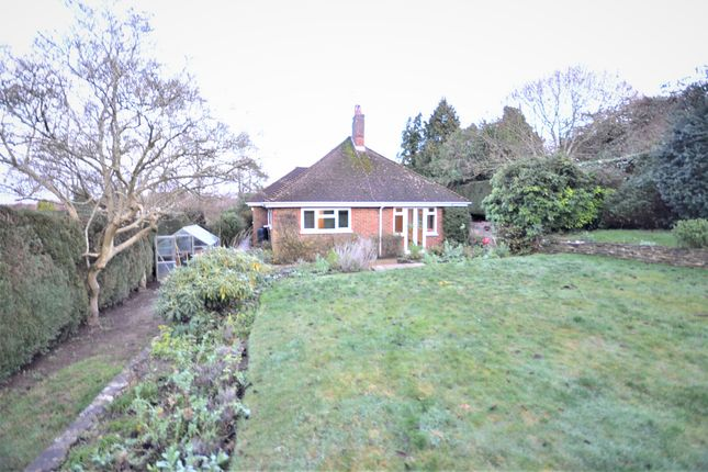 Thumbnail Detached bungalow to rent in Hillary Road, Farnham, Surrey
