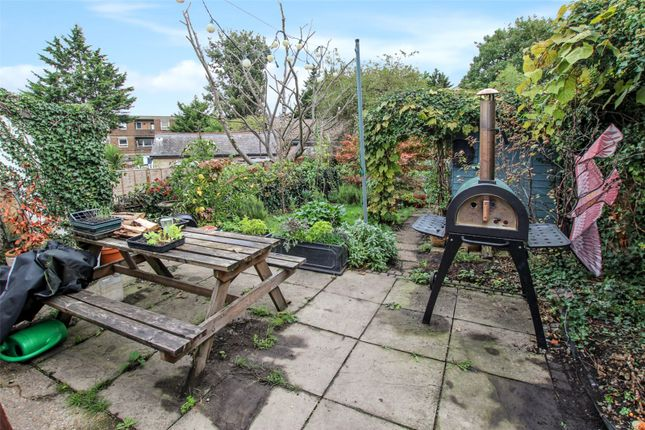 Garden of Paget Terrace, Woolwich, London SE18